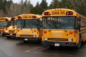 Image of buses at bus barn